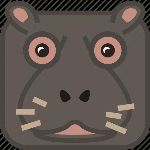 africa, animals, hippo, safari, square, wild, yumminky icon