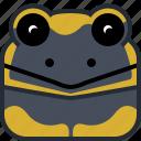 animals, avatar, head, lizard, salamander, square icon
