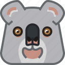 animals, bear, eucalyptus, koala, square, yumminky, zoo icon