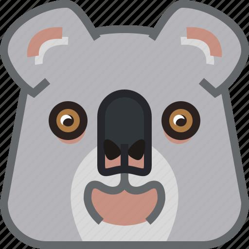 animals, bear, eucalyptus, koala, square, yumminky, zoo icon