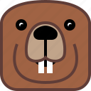 animals, beaver, dam, head, square, wild icon