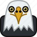 animals, eagle, head, predator, square, wild, yumminky, zoo icon