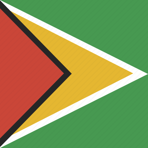 flag, guyana, square icon