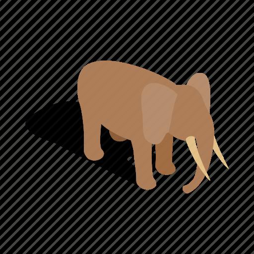 animal, elephant, isometric, mammal, nature, wild, wildlife icon