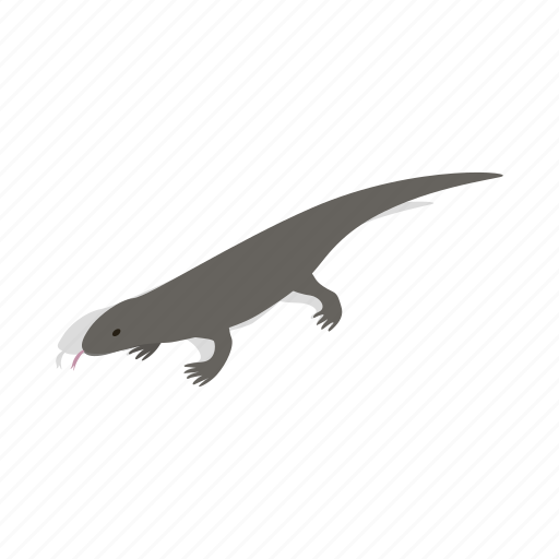 animal, isometric, lanka, lizard, reptile, sri, wildlife icon