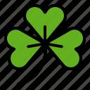 clover, leaf, luck, plant, saint patrick