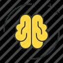 brain, brainy, intelligence, simulation icon