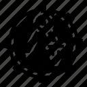 compasses, design, divider, gear, writing icon