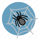 cobweb, dusty, halloween, net, spider icon
