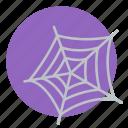cobweb, dusty, halloween, net, spider