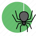 animal, evil, halloween, insect, spider