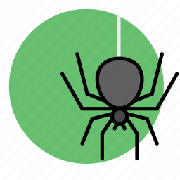 animal, evil, halloween, insect, spider icon