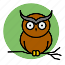 animal, evil, halloween, owl, witch icon