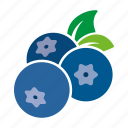 blueberries, blueberry, food, fruit, sticker icon