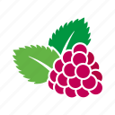 food, fruit, leaves, raspberry, sticker icon