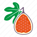 fig, food, fruit, halved, sticker icon