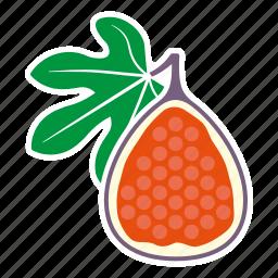 fig, food, fruit, halved, sticker icon