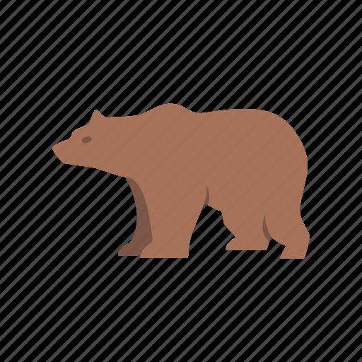 bear, bear market, brown bear, grizzly bear icon