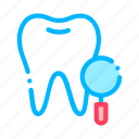 dentist, stomatology, survay, tooth