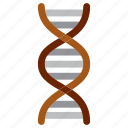dna, education, office, school, study icon