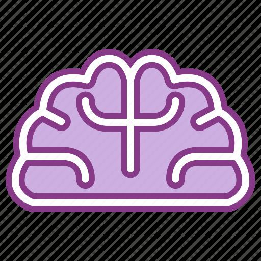 brain, education, mind, study icon