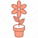 education, flower, nature, study icon
