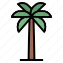 beach, coconut, palm, tree