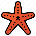 animal, aquatic, ocean, sea, starfish icon
