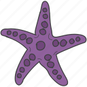 fish, sea creature, sea star, seafood, starfish icon