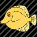 aquatic animal, fish, goldfish, sea creature, seafood