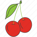 berries, cherries, food, fruit, gooseberries icon