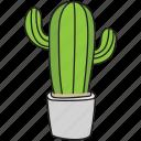 botanical, cactus, prickly pear, succulent, wild plant
