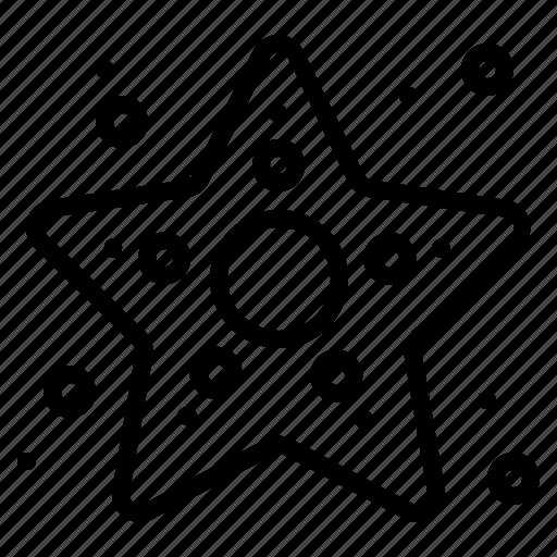 fish, sea, star, starfish, summer icon
