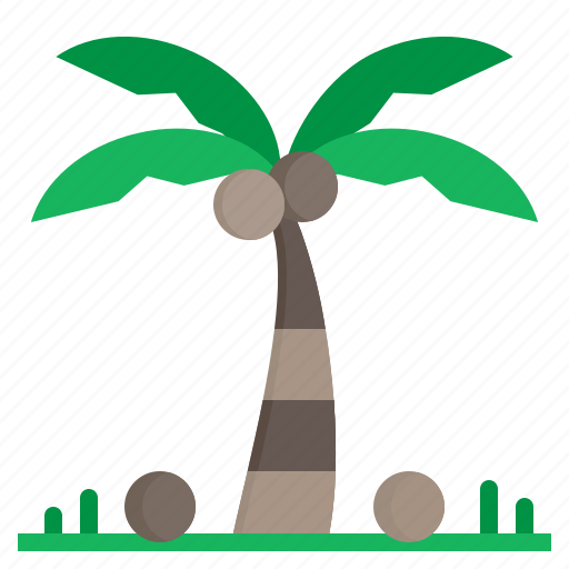 Beach, nature, palm, summer, tree icon - Download on Iconfinder