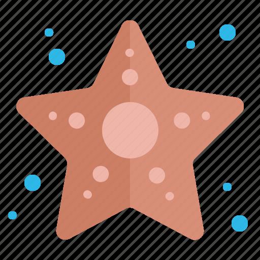 Fish, sea, star, starfish, summer icon - Download on Iconfinder