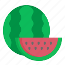 food, fruit, melon, summer, water icon