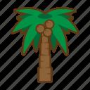 beach, palm, summer, sea, tree
