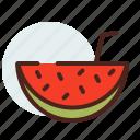drink, fruit, watermellon icon