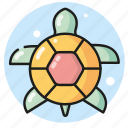 animal, pet, sea, summer, turtle icon