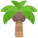 coconut, tree, tropical, palm, plant, fruit