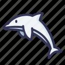dolphin, animal, mammal