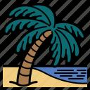 coconut, tree, beach, palm, scenery, nature, landscape