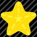 beach, star, star fish, starfish
