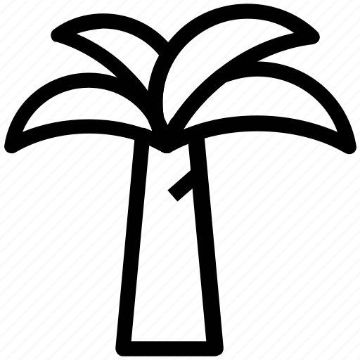 arecaceae, beach, palm tree, palms icon