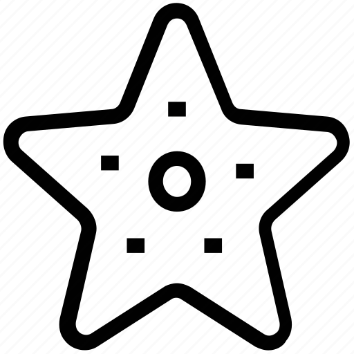 echinoderm, fish, sea star, star fish icon