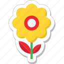 bloom, blossom, daisy, flower, sunflower icon