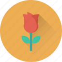 blossom, flower, love symbol, rose, rosebud icon