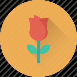 blossom, flower, love symbol, rose, rosebud icon