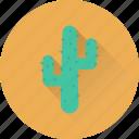 cactus, cactus plant, desert cactus, desert plant, plant icon
