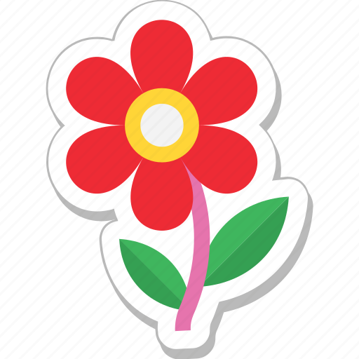 beauty, daisy, flora, flower, nature icon